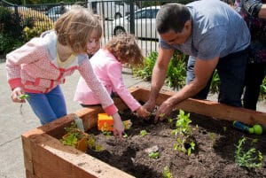 Planting our garden - Welcoming Community - Adamstown Uniting Church