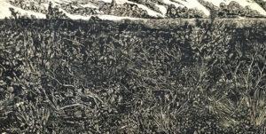 Detail of 'Awabakal' artwork by Graham Wilson